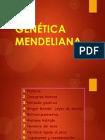 genetica mendeliana y el estudio de los dihibridos