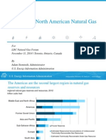 Outlook for American Natural Gas_sieminski_11112014
