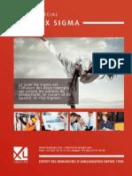 ebook_lean_six_sigma_xlgroupe_503915.pdf