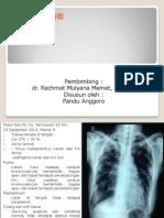 Expertise TB Paru