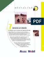 7 Servicio Client e