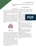 CN6 - RESUMO SISTEMA RESPIRATÓRIO.pdf