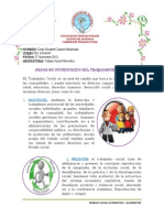 AREAS DE INTERVENCION.pdf