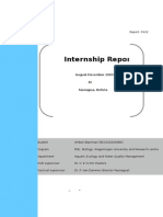 3. Example Internship Report