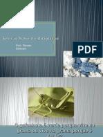 seleonaturaleadaptao-131019100421-phpapp01