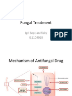 Fungal Treatment