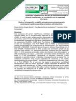 Estudio de la variabilidad intraespecífica del gen de fosfomanomutasa en Leishmania braziliensis y su correlación con la capacidad infectante