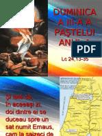 Pasti IIIA1