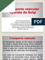 Transporte Vesicular Aparato de Golgi