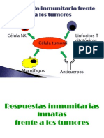 respuesta inmunitaria a tumores