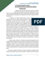El Proceso de Habeas Corpus Como Mecanismo de Protección de Los Derechos Humanos
