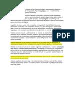 CLF Industrial (Presentacion)