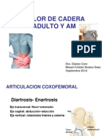 DOLOR DE CADERA ADULTO Y AM  MF.ppt