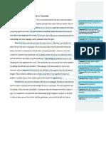 microsoft word - soccer community peer review