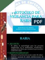 Protocolo de Vigilancia Para Rabia