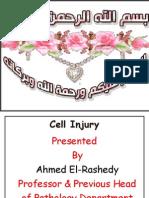 WEEK 5 Cell injury.pdf