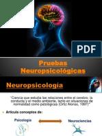 Seminario Psicofisiologia Equipo 4