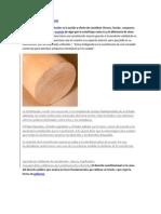 DEFINICIÓN DECONSTITUCIÓN.docx