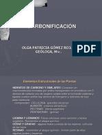 PROCESO DE CARBONIFICACIÓN