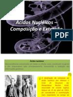 Ácidos Nucléicos – Composição e Extração