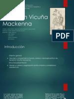 Benjamín Vicuña Mackena_VF