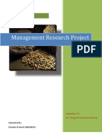 Management Research Project- Commodity Index