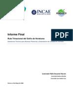 Informe Final Ruta Trinacional
