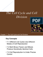 hillis Ch07 Lecture-The Cell Cycle and Cell Division.ppt