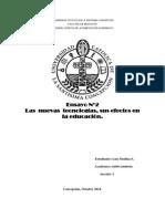 ensayo n2 informe