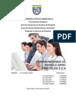 Informe Modelo OPM3