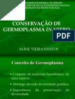 Conservação in vitro de Plantas
