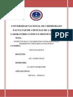 INVESTIGACION Estructuras y Elementos Patológicos en Sedimento Urinario Patológico