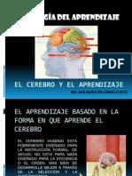 cerebro y aprendizaje humano