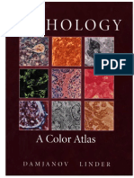 Pathology A Color Atlas.pdf