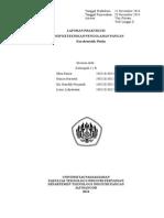Cover Karakteristik Fluida