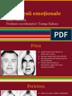 Matei Isabella Expresii Emotionale Conceptmap Grupa1 Pedagogie