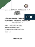 Analisis 04 Cenizas Para Imprimir