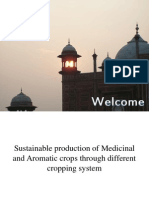 Sustainable production of Medicinal and Aromatic Plants through different cropping systems