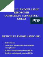 Curs Nr. 8 Organite Citoplasmatice - RE Rib CxG