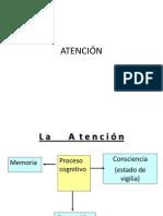 12 atención 1 (3)