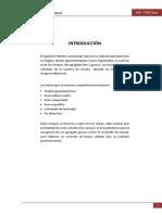 Informe de Concreto