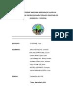 Informe Final Insectos