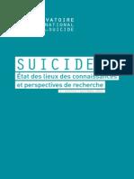 Rapport sur le suicide
