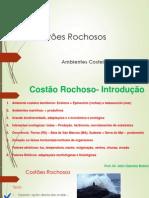 Aula Prof.julio Costao Rochoso