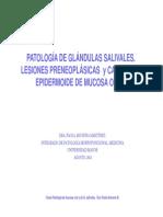 Patolog_a Oral y g Salivales Med 2013 Umayor e [Modo de Compatibilidad]