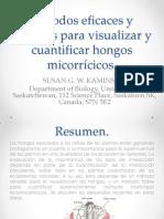 Métodos Eficaces y Flexibles Para Visualizar y Cuantificar