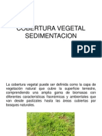 Cobertura Vegetal