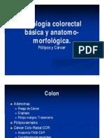 Cancer de Colon Curso Superior 1