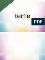Presentación Resultados TERCE2013 (OPT)