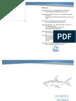 shark key final 2